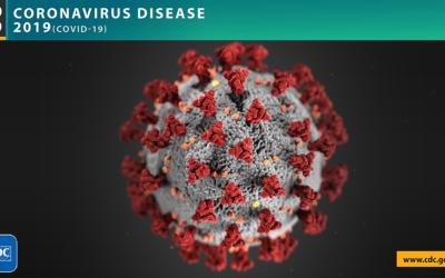 Coronavirus Disease 2019 (COVID-19) Outbreak
